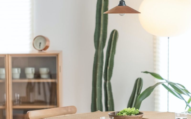 table with cactus in background